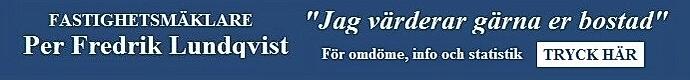 Fastighetsmäklare Per Fredrik Lundqvist
