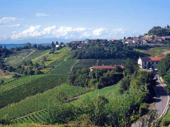 Bild: 360 m² villa på Vigliano D'Asti, Italien Piemonte