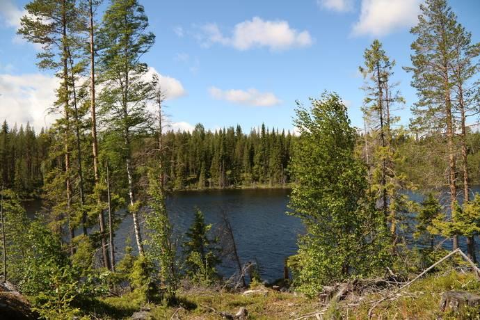 Bild: 50 m² gård/skog på Bergböle 105, Östersunds kommun Lockne-Bleka