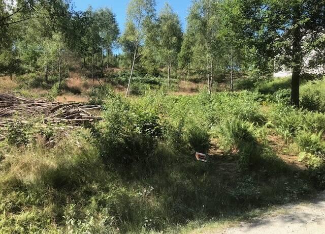 Bild: tomt på Svedjevägen 3, Marks kommun Hyssna