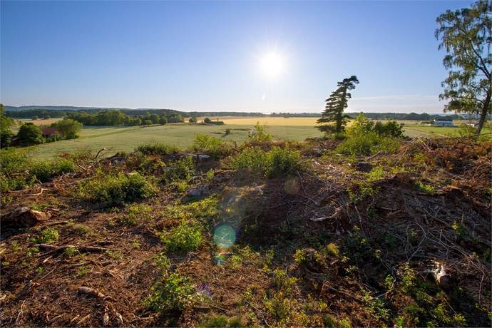 Bild: tomt på Stommen 645, Vänersborgs kommun Vänersnäs