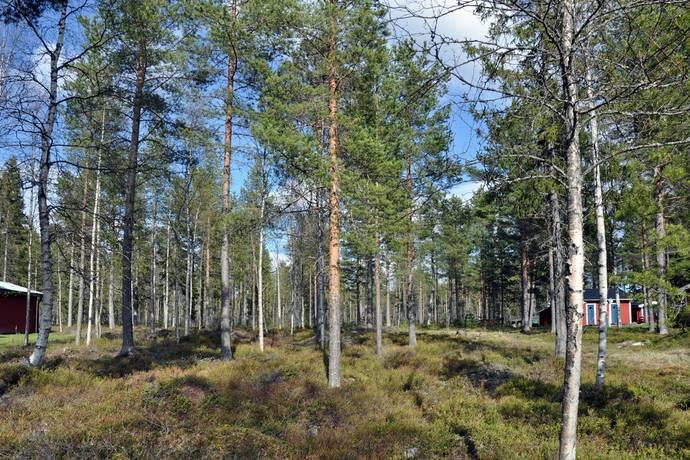 Bild: tomt på Bunäsuddvägen, Piteå kommun Jävrebyn