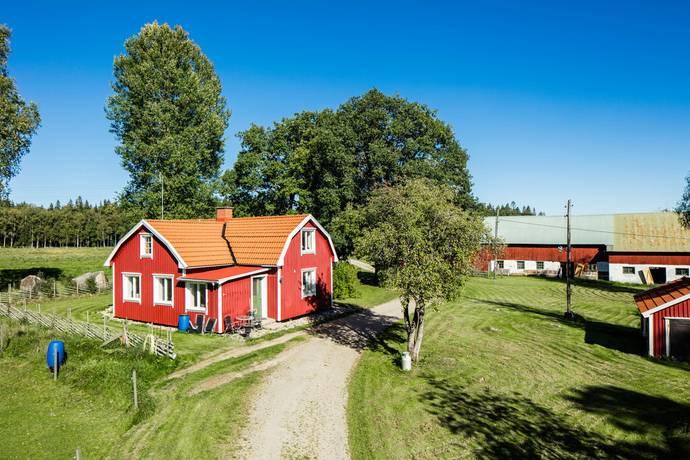 Bild: gård/skog på Skogen Lilla hulan, Svenljunga kommun SVENLJUNGA