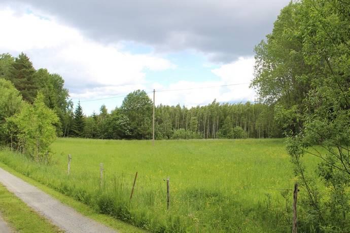 Bild: tomt på Hamre, Knivsta kommun Husby -Långhundra
