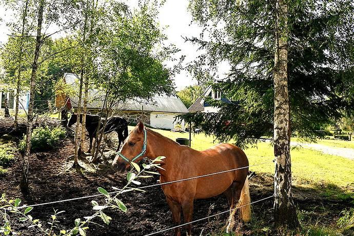 Bild: 7 rum gård/skog på Kyrkebo 126, 385 92 Gullabo, Torsås kommun Kyrkebo Gullabo Torsås Småland