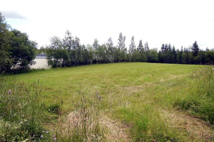 Bild: tomt på Ärlvägen, Tomt 1, Nässjö kommun Äng