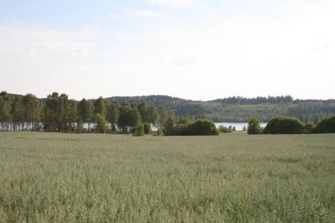 Bild: tomt på Acksjön 628, Karlstads kommun Molkom