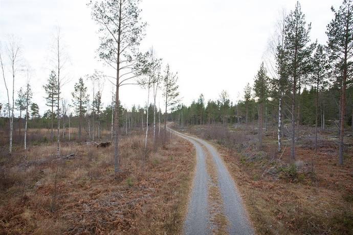 Bild: tomt på Rogsta 7:44, Härnösands kommun Häggdånger Rödhålsmalen