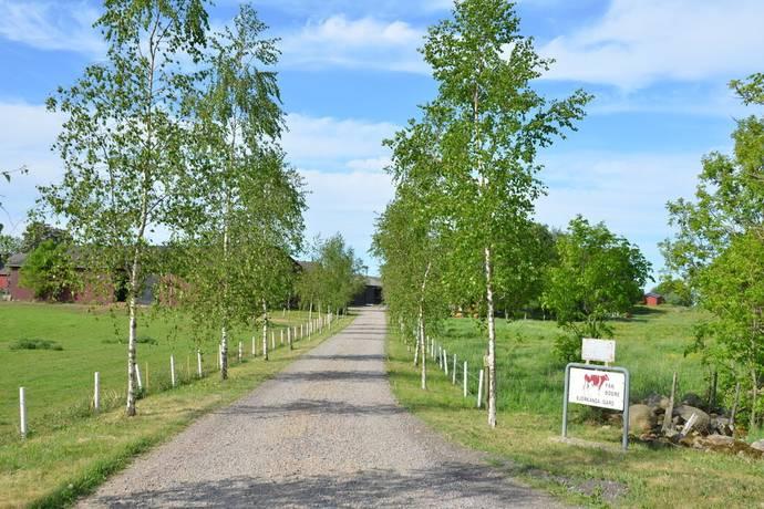 Bild: 125 m² gård/skog på Östra Klasarödsvägen 262-16, Sjöbo kommun Lövestad