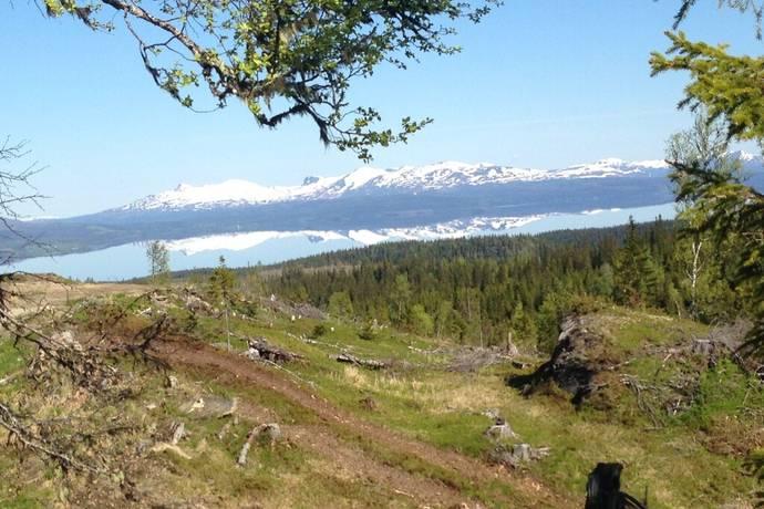 Bild: gård/skog på Sölvsved 1:37, del av, Åre kommun Sölvsved