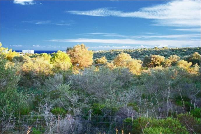 Bild: tomt på Plot, Mallorca - Cala Murada , ES, Spanien Cala Murada