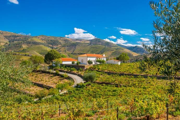 Bild: 8 rum villa på Ervedosa do Douro, Portugal Norra Portugal