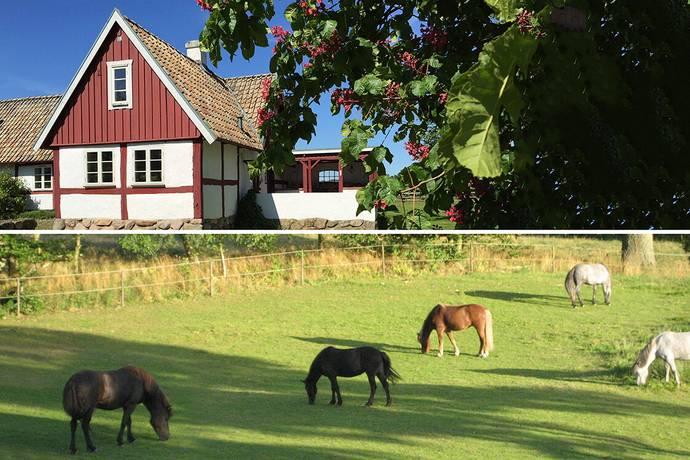 Bild: 6 rum gård/skog på Genarp 1163, Lunds kommun RISEN