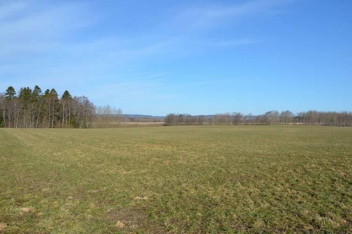 Bild: gård/skog på Tåstorp, Skövde kommun