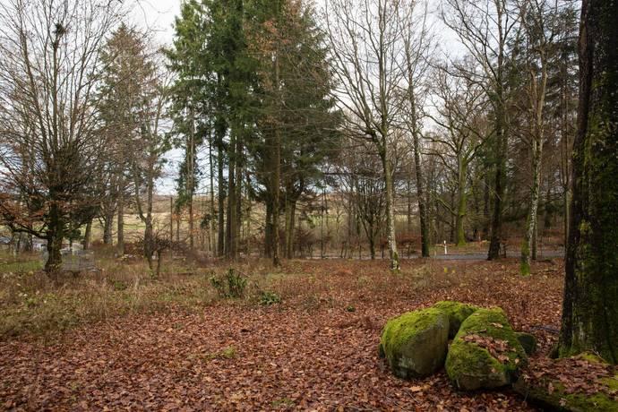 Bild: tomt på Jularp 117, Höörs kommun Jularp - Höör