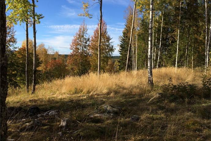 Bild: tomt på Röjarvägen 3, Smedjebackens kommun Vinarn