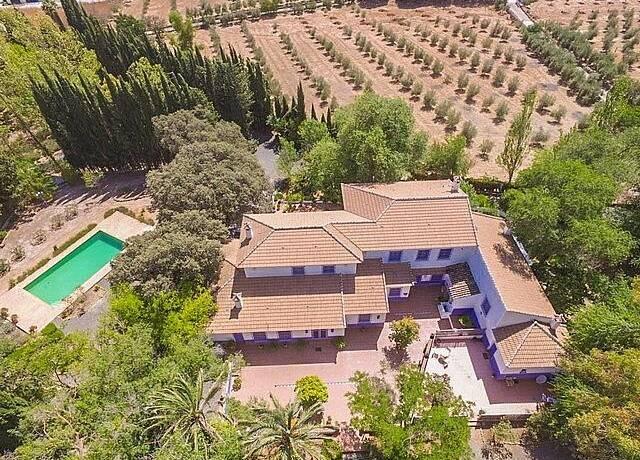Bild: 7 rum övrigt på Farm, Malaga - Archidona, ES, Spanien Archidona