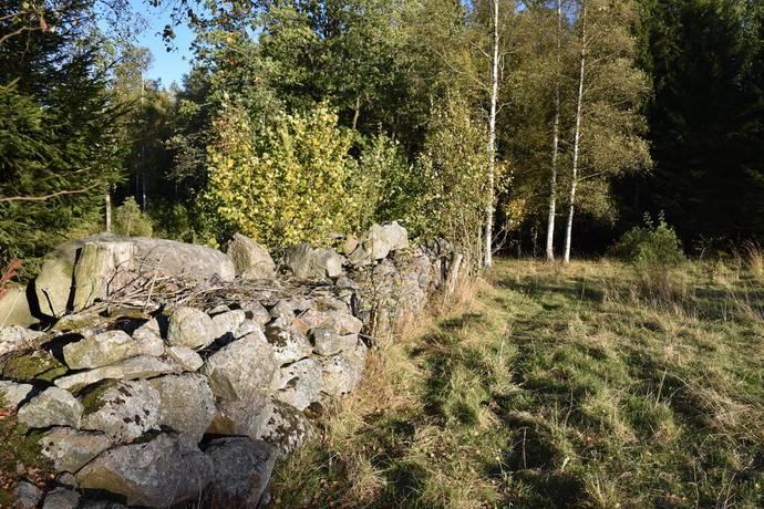 Bild: gård/skog på Sandebo 6, Vetlanda kommun