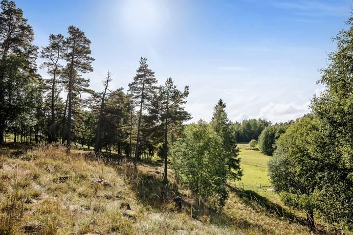 Bild: tomt på Lännaviksvägen, Norrtälje kommun Vettershaga