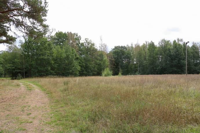 Bild: gård/skog på Västra Rynninge, Örebro kommun