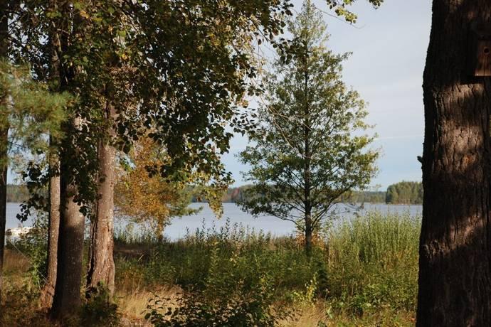 Bild: tomt på Untra 90, Tierps kommun Dalälven