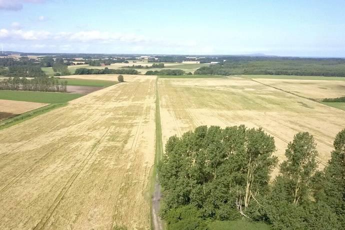 Bild: gård/skog på Helsingborgsvägen 548, Ängelholms kommun