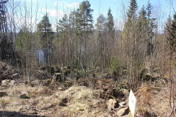Bild: tomt på Gnarps-berge 1:42, Nordanstigs kommun Årskogen