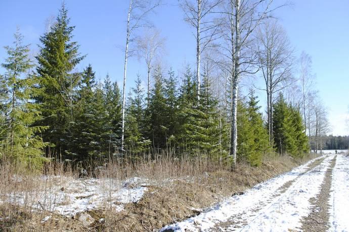 Bild: gård/skog på Botorp, Tranås kommun Botorp