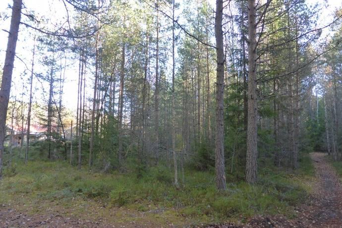 Bild: tomt på Stenåsvägen, Forshaga kommun Dyvelsten