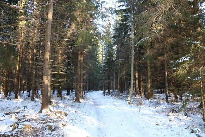 Bild: gård/skog på Vreta Mellangård 1, Lekebergs kommun