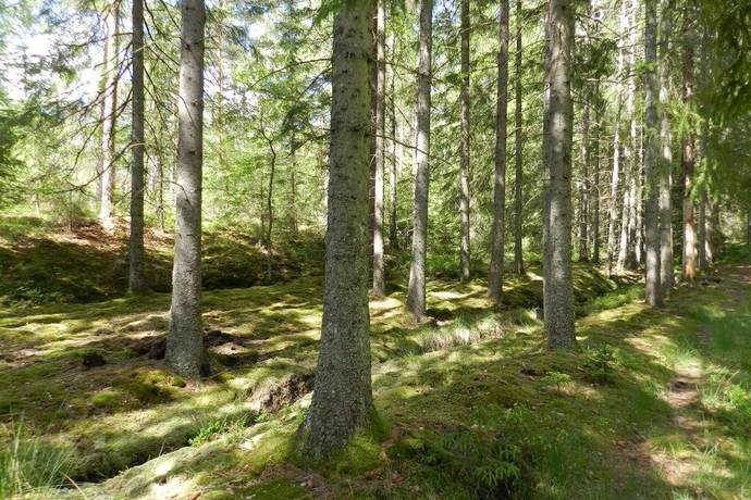 Bild: gård/skog, Strömstads kommun