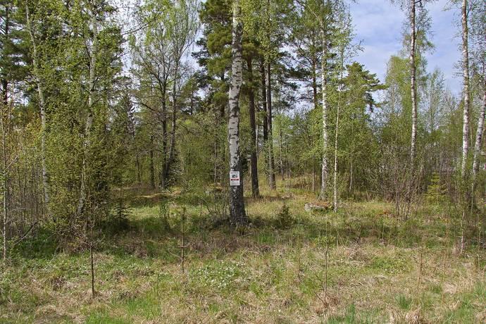 Bild: tomt på Nylandets Väg 22, Norrtälje kommun Hensvik Herräng