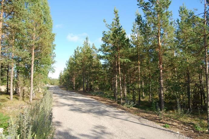Bild: tomt på Ardre Alsarve, Gotlands kommun Ardre