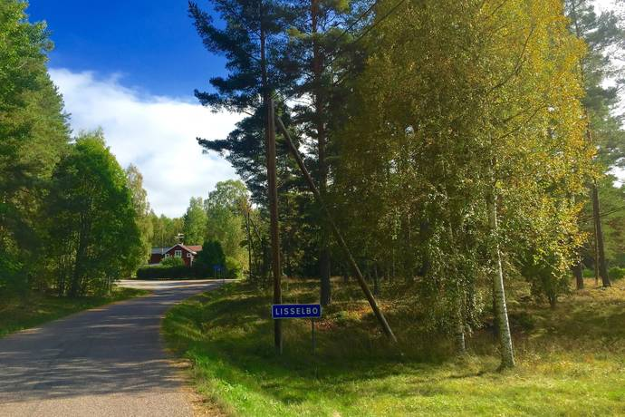 Bild: tomt på Svartskär/Lisselbo, Falu kommun Lisselbo/Kniva