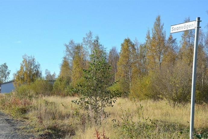 Bild: tomt på Svanvägen, Haparanda kommun Närsta