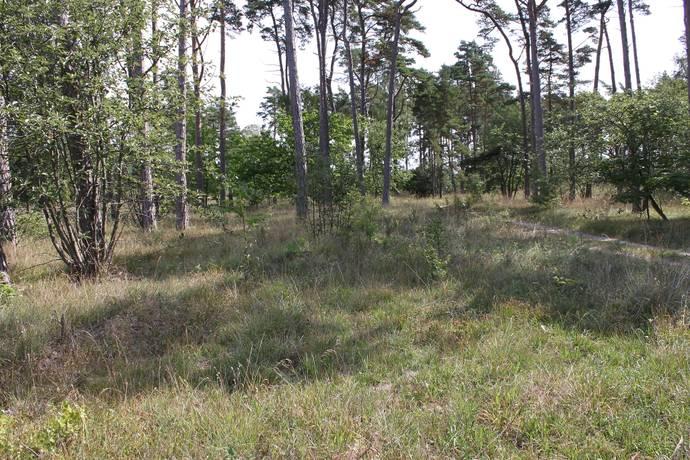 Bild: tomt på Vamlingbo Gervalds 1:68, Gotlands kommun Vamlingbo