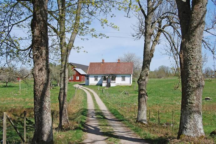 Bild: gård/skog på Lilla Ånhult Frambyn, Hultsfreds kommun Frambyn Lilla Ånhult