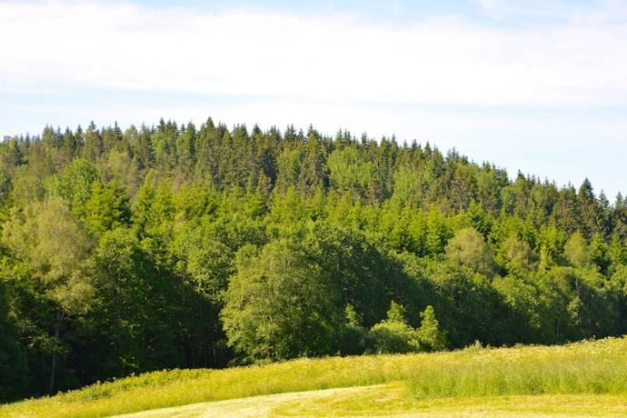 Bild: gård/skog på Böle 160, Dals-Eds kommun Böle- Rölanda