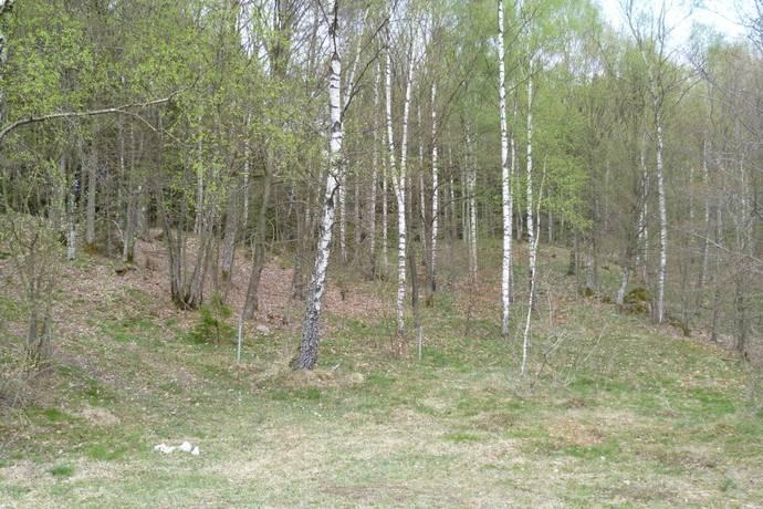 Bild: tomt på Vanåsvägen, Örkelljunga kommun Åsljunga