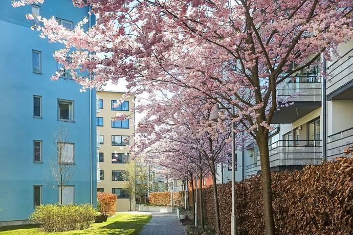 Bild: 2 rum bostadsrätt på Sofielundsvägen 33, Stockholms kommun Enskededalen