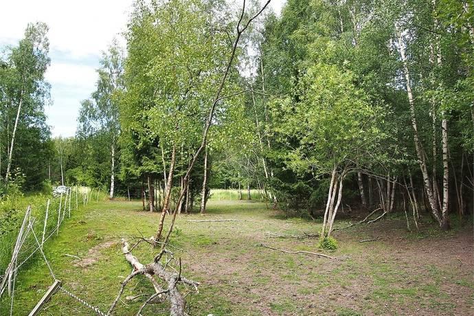 Bild: tomt på Östernäs byväg 31, Norrtälje kommun Rådmansö-Östernäs