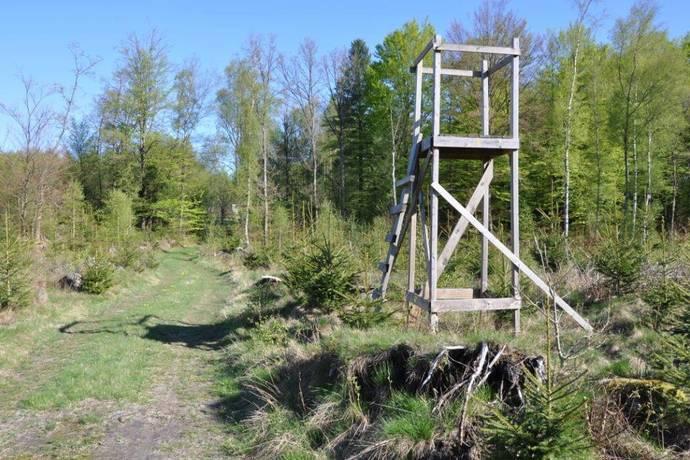 Bild: gård/skog på Kolarehusvägen, Klippans kommun Kolarehus