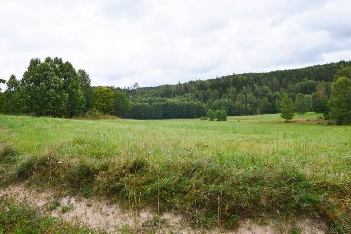 Bild: tomt på Silbodals-risviken 1:59, Årjängs kommun Årjäng