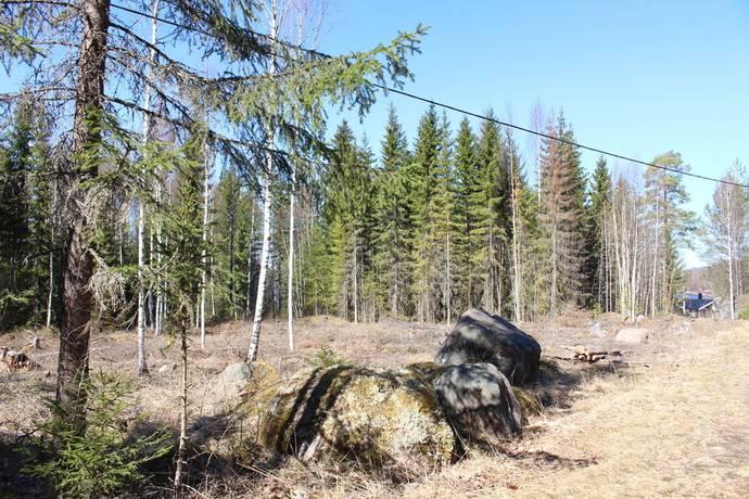 Bild: tomt på Bäckebo Bodlandsvägen 78-10, Ljusdals kommun TALLÅSEN