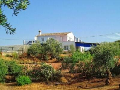 Bild: 4 rum övrigt på Farm, Malaga - Antequera - Costa del Sol, ES, Spanien Antequera