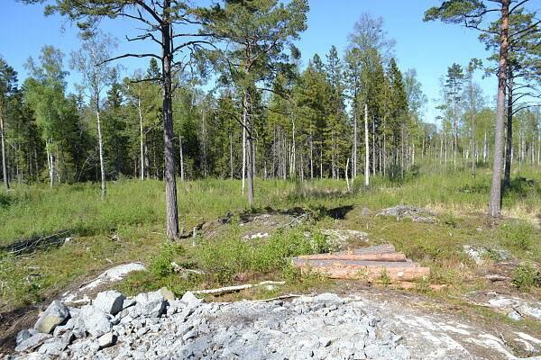 Bild: tomt på Elviras stig 7, Norrtälje kommun Gräddö
