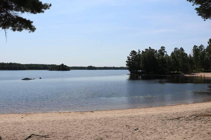 Bild: tomt på Tallåsvägen 23, Ljungby kommun