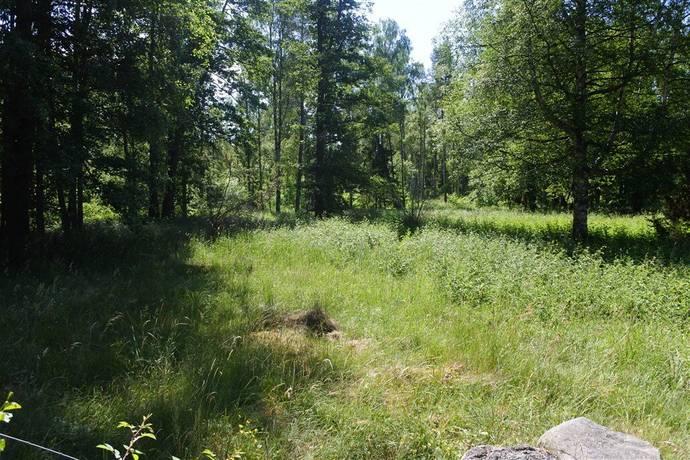 Bild: tomt på Kolnäsvägen, Norrtälje kommun Blidö