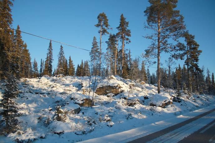 Bild: tomt på Sågliden, Älvdalens kommun Grövelsjön Sågliden