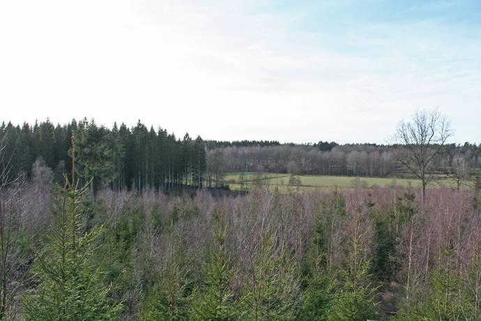Bild: gård/skog, Hässleholms kommun Rättelöv